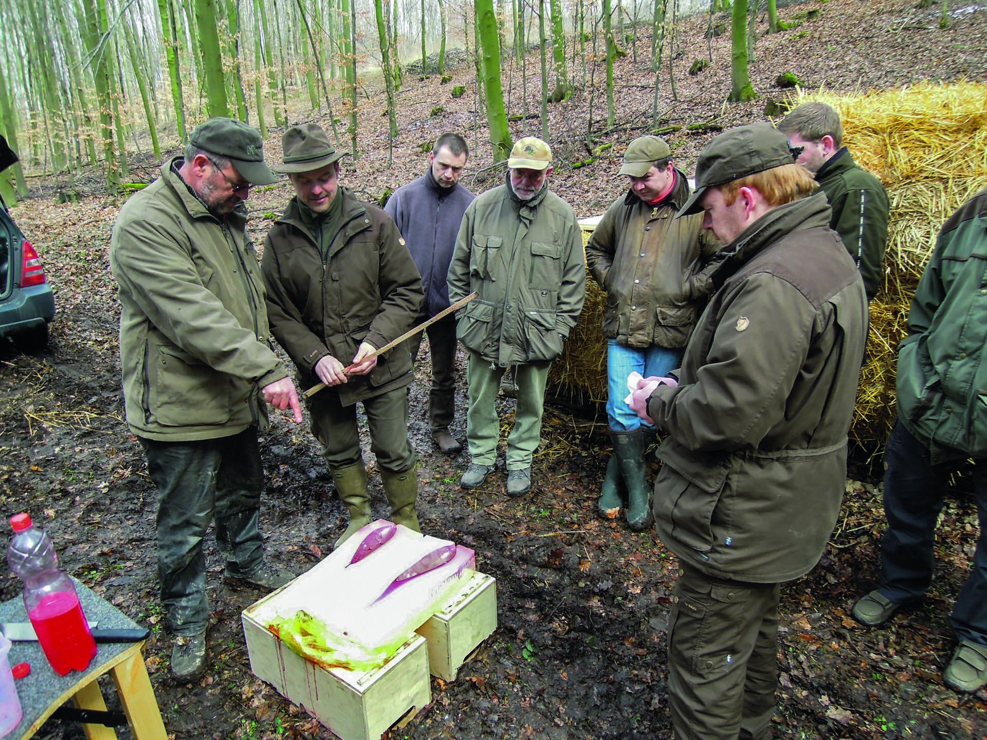Aufmacher 2 Bild 03_DSCN1737 Kopie jaegermagazin jagd bleifreie munition kaliber beschuss buechse