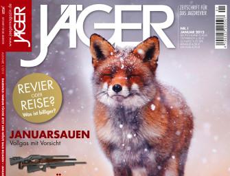 Januar 2015: Fuchsjagd