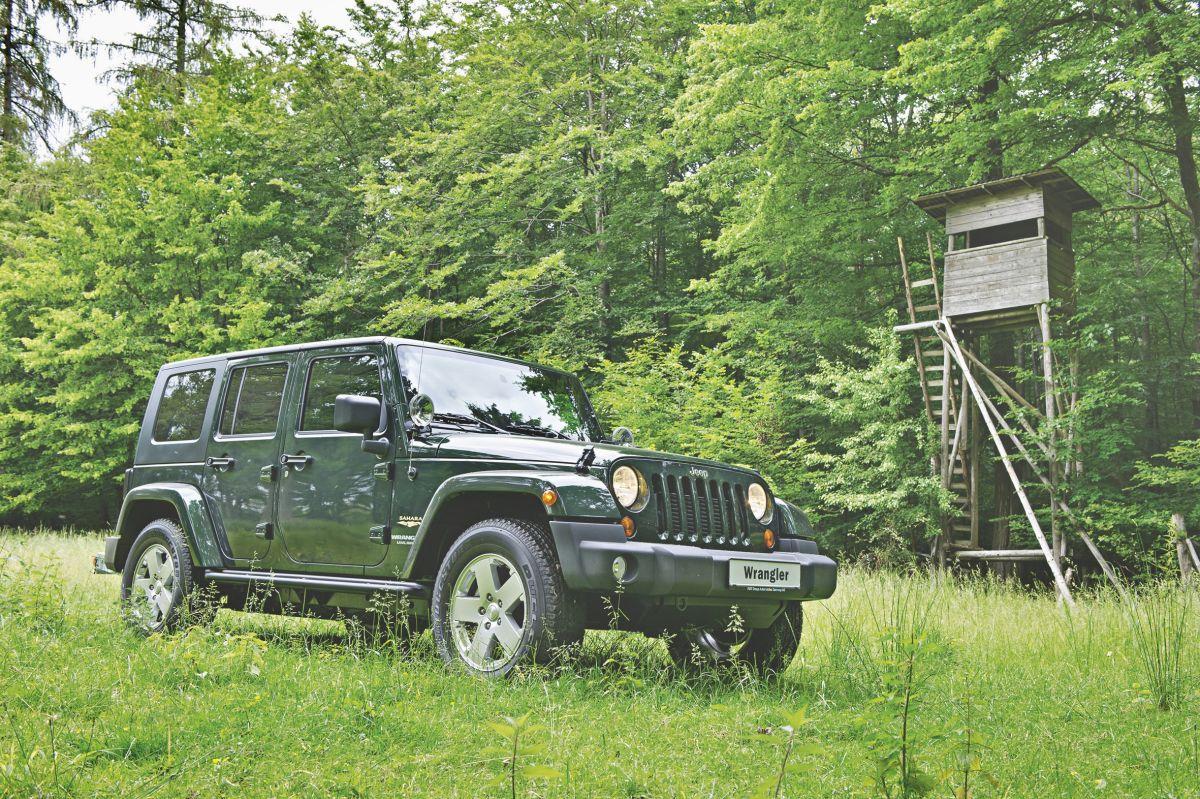 Jeep Wrangler: Auf Buckelpisten eine Wohltat für den Jägerrücken.