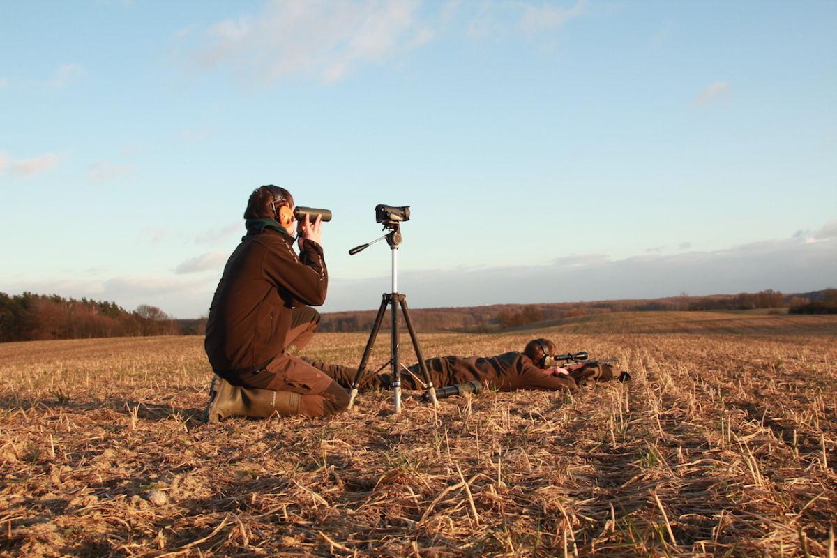 Die Kamera haben die beiden Brüder immer mit dabei. Es könnte sich ja die Gelegenheit ergeben, einzigartige Aufnahmen zu machen. ©Paul Reilmann