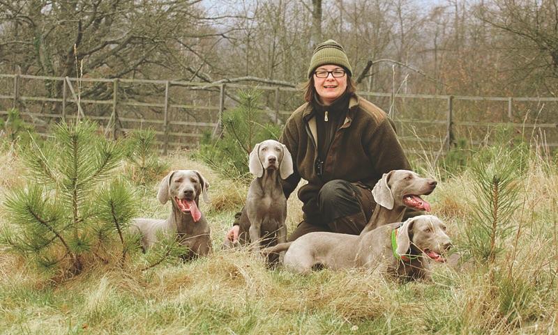 Andrea Deppner mit ihren Kurzhaar-Weimaranern. ©Andrea Deppner