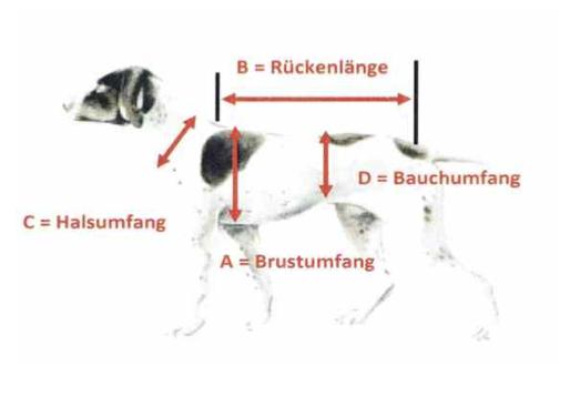 Die richtige Schutzwesten Größe für Ihren Hund ermitteln wir mit Auswertung eines speziellen Maßblattes.
