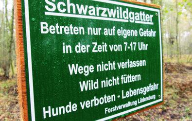 Zitat: In diesem Gatter in Norddeutschland werden halbzahme Wildschweine gehalten. Für viel Geld darf man sie abschießen. Dagegen kämpfen nicht nur Tierschützer, sondern auch viele Jäger finden das unwürdig. ©Screenshot SWR/TV-Info