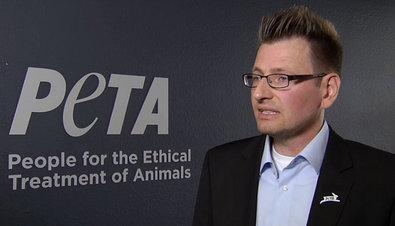 """Zitat: Peter Höffken, Sprecher der Tierrechtsorganisation PETA, kämpft gegen die Jagd. """"Sie ist ein Unrecht gegen die Natur. Die Wildbestände regulieren sich von selbst"""", sagt er. ©Screenshot SWR/TV-Info"""