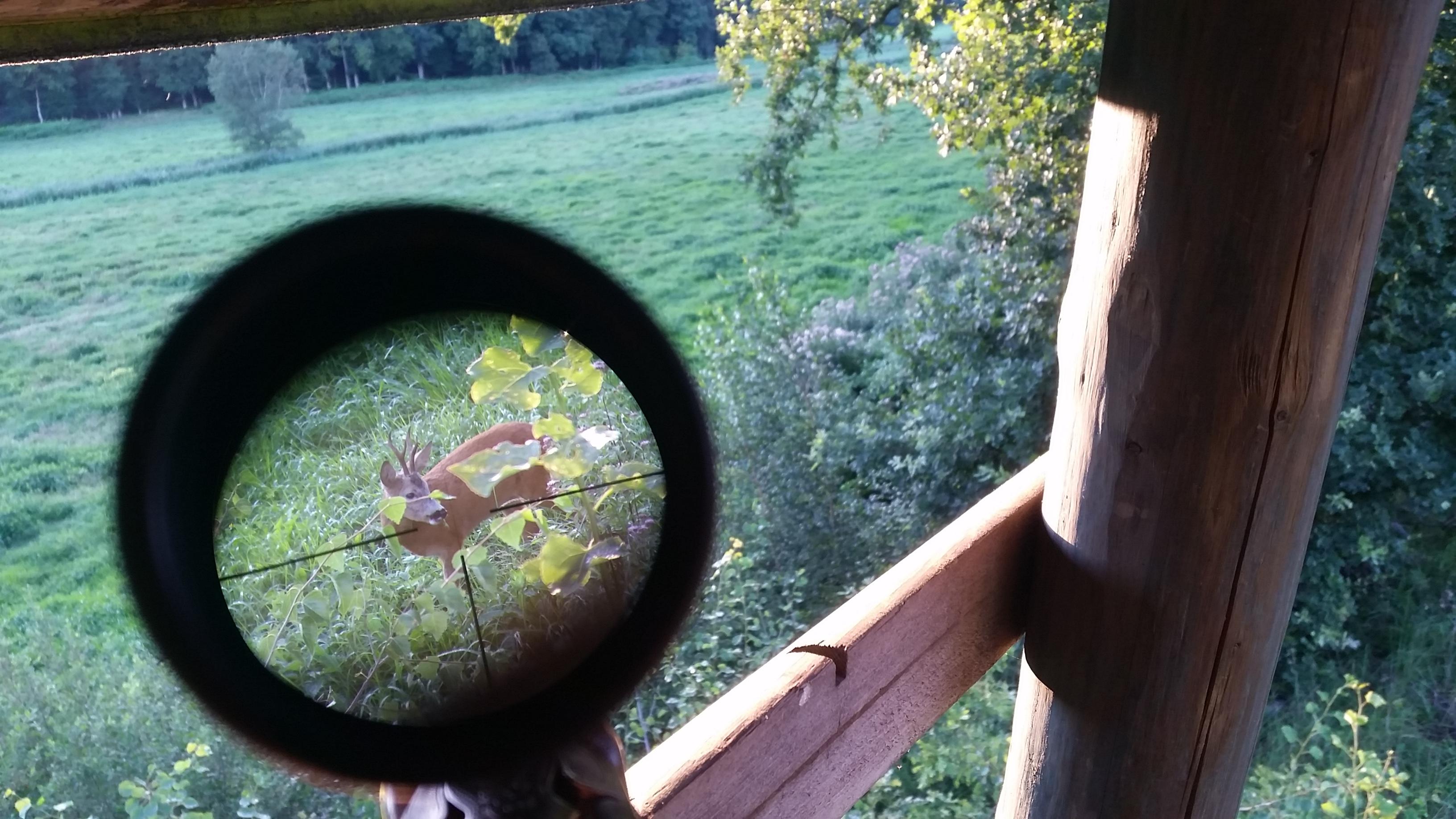 jaegermagazin jagd wilddiebe schmidtundbender zielfernrohr