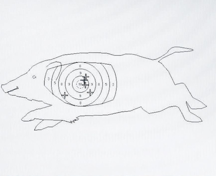 Jonas 1250g jaegermagazin jagdschule gut grambow Sauer 404 Büchse Kalbiber Abzugsgewicht Abzug