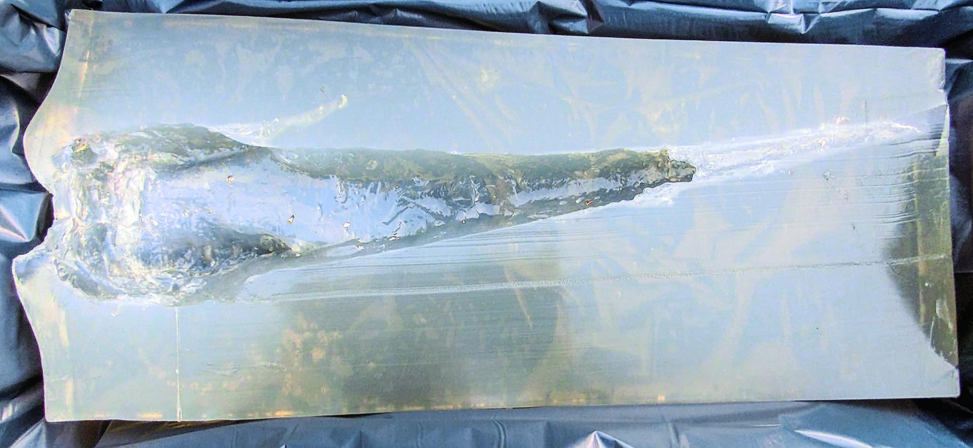 KB 2c Bild 08a_3006 evo green 2 Kopie jaegermagazin jagd bleifreie munition kaliber beschuss buechse