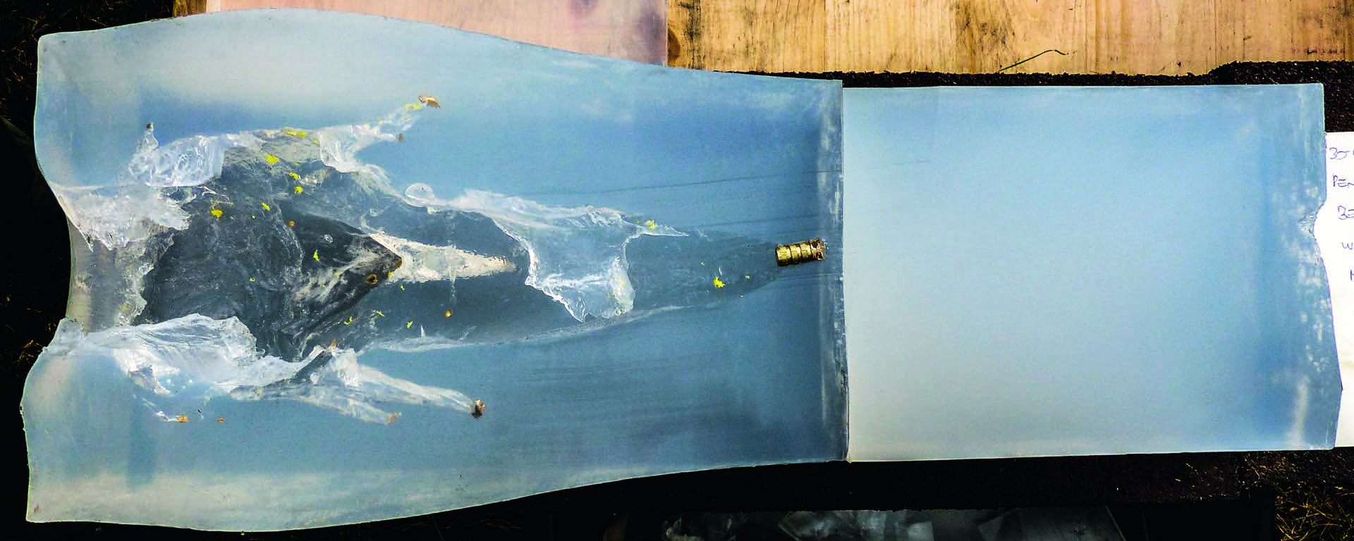 KB 2e Bild 10_RWS_Bionic Yellow_Seife jaegermagazin jagd bleifreie munition kaliber beschuss buechse