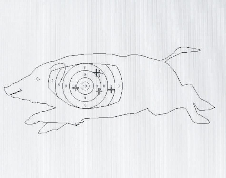 Lucas 500g jaegermagazin jagdschule gut grambow Sauer 404 Büchse Kalbiber Abzugsgewicht Abzug