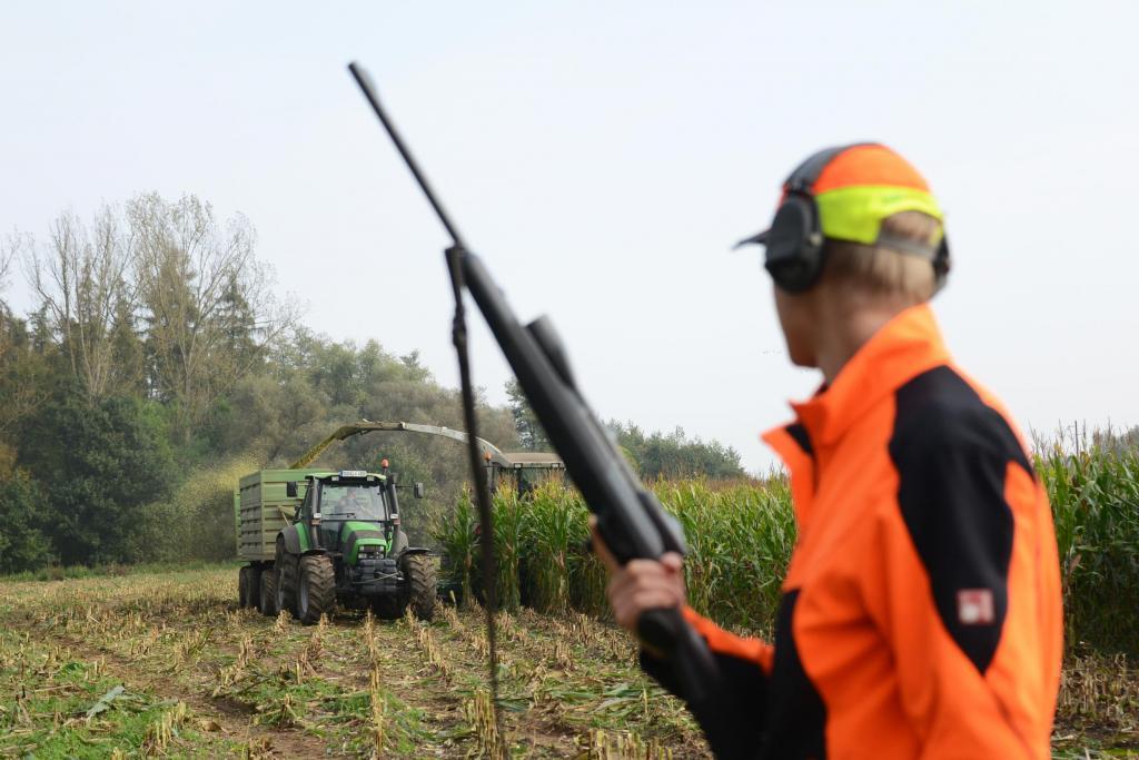 Warnkleidung und erhöhte Position sorgen für Sicherheit bei der Erntejagd. (Quelle: Kauer/DJV)