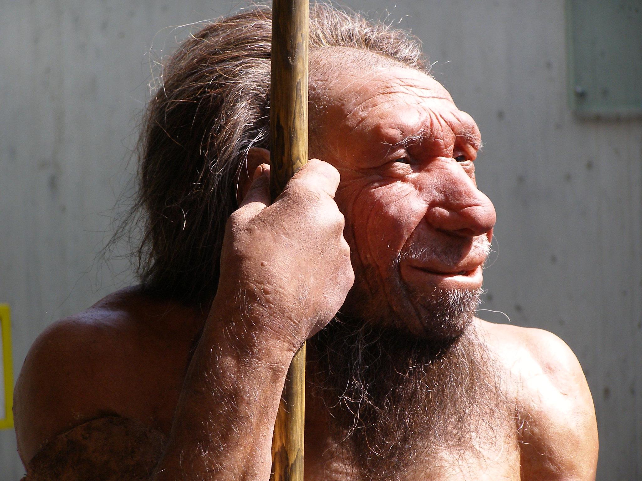 Evolutionär bedingter Jäger - der Neandertaler ©Pixabay