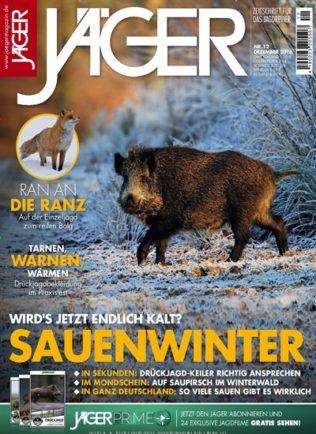 Sauenwinter