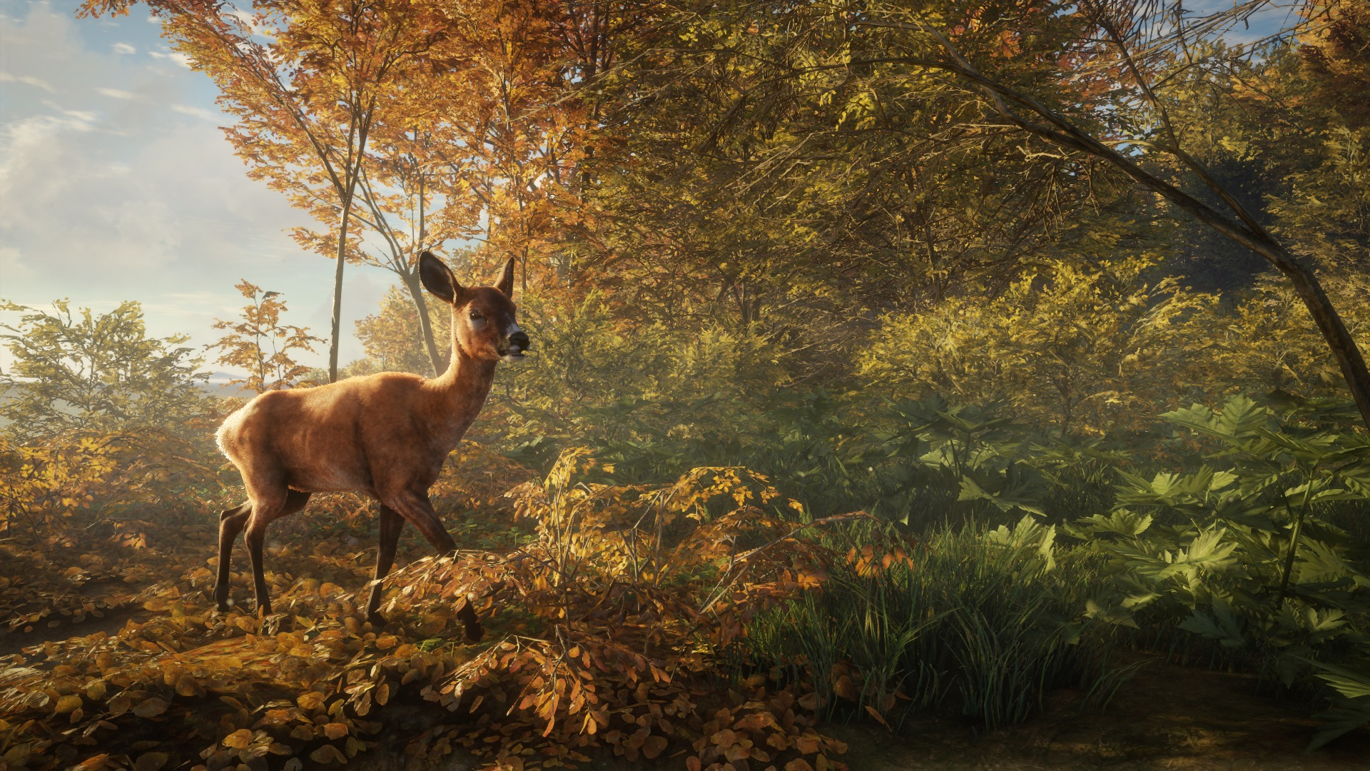 astragon Entertainment theHunter Call of the Wild Jagdspiel Videospiel Spiel PC Game Jagd Jagen Jäger Hunter