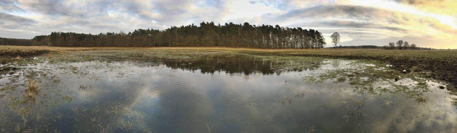 Die Wilddiebe - Revierarbeiten im Frühjahr Entwässerung Jägermagazin Reilmann Reilmanns