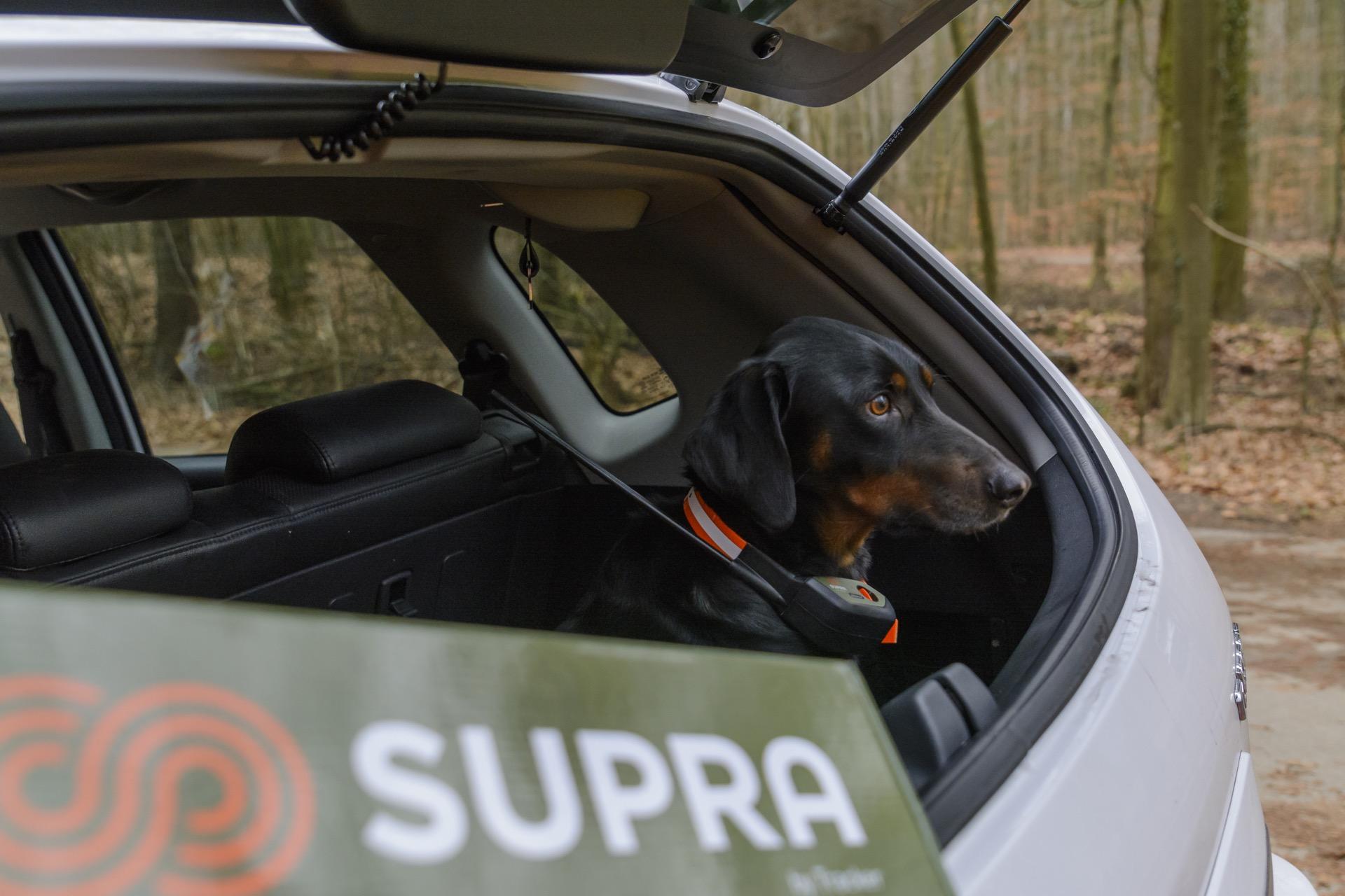 GPS Hundeortung - Der Tracker Supra im Praxistest