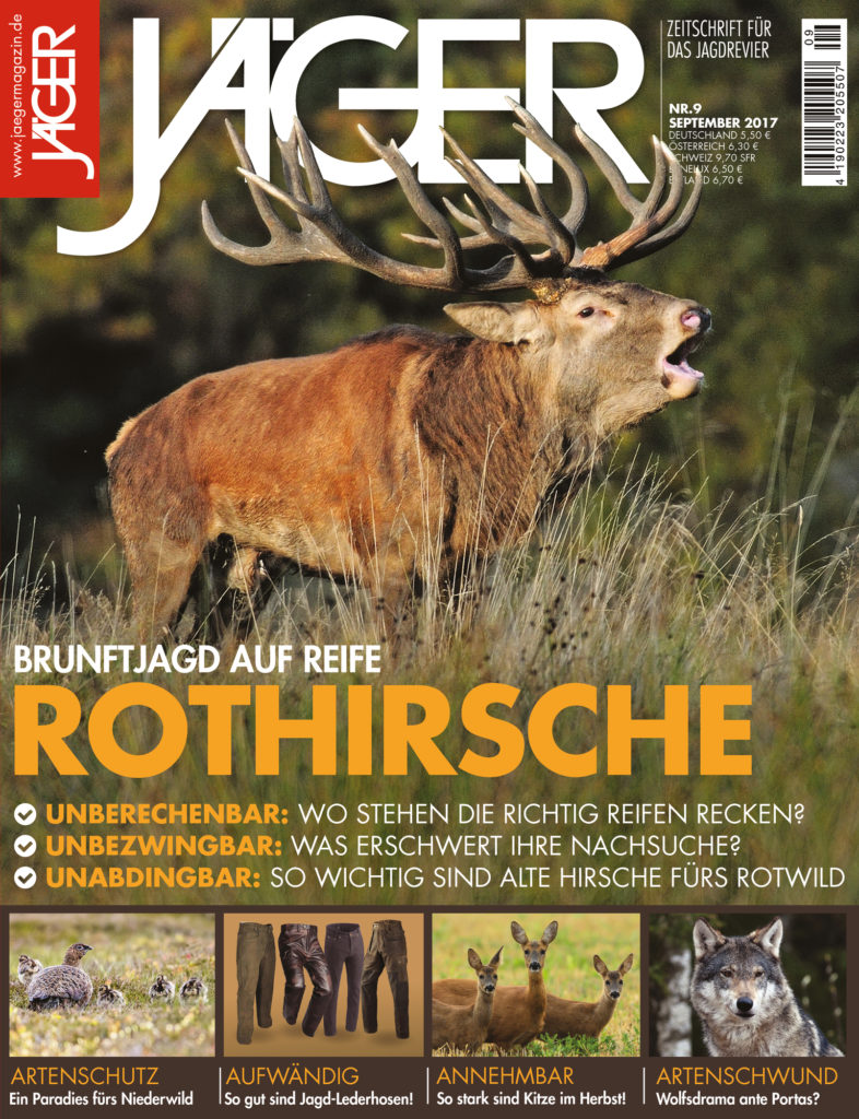 Jägermagazin September 2017 Brunftjagd aus reife Rothirsche