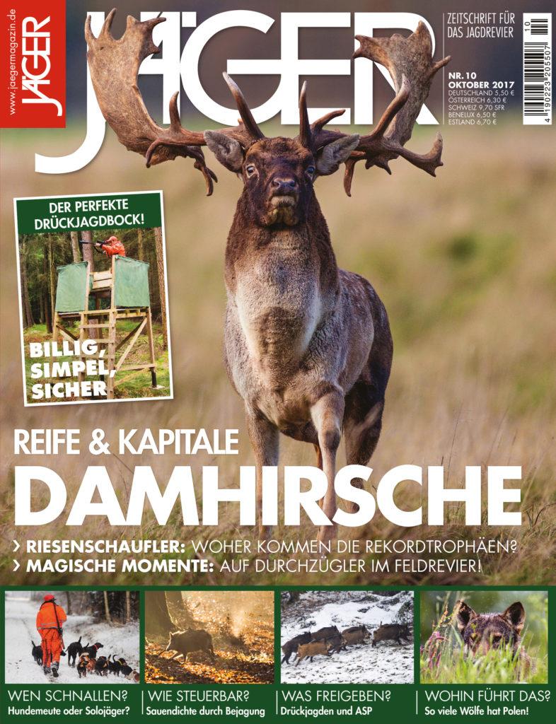 Reife & Kapitale Damhirsche