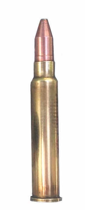 Hochwildtaugliche Kaliber Patrone 6,5mm Jagdmunition Munition 6,5x50 REB
