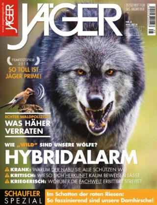 Hybridalarm