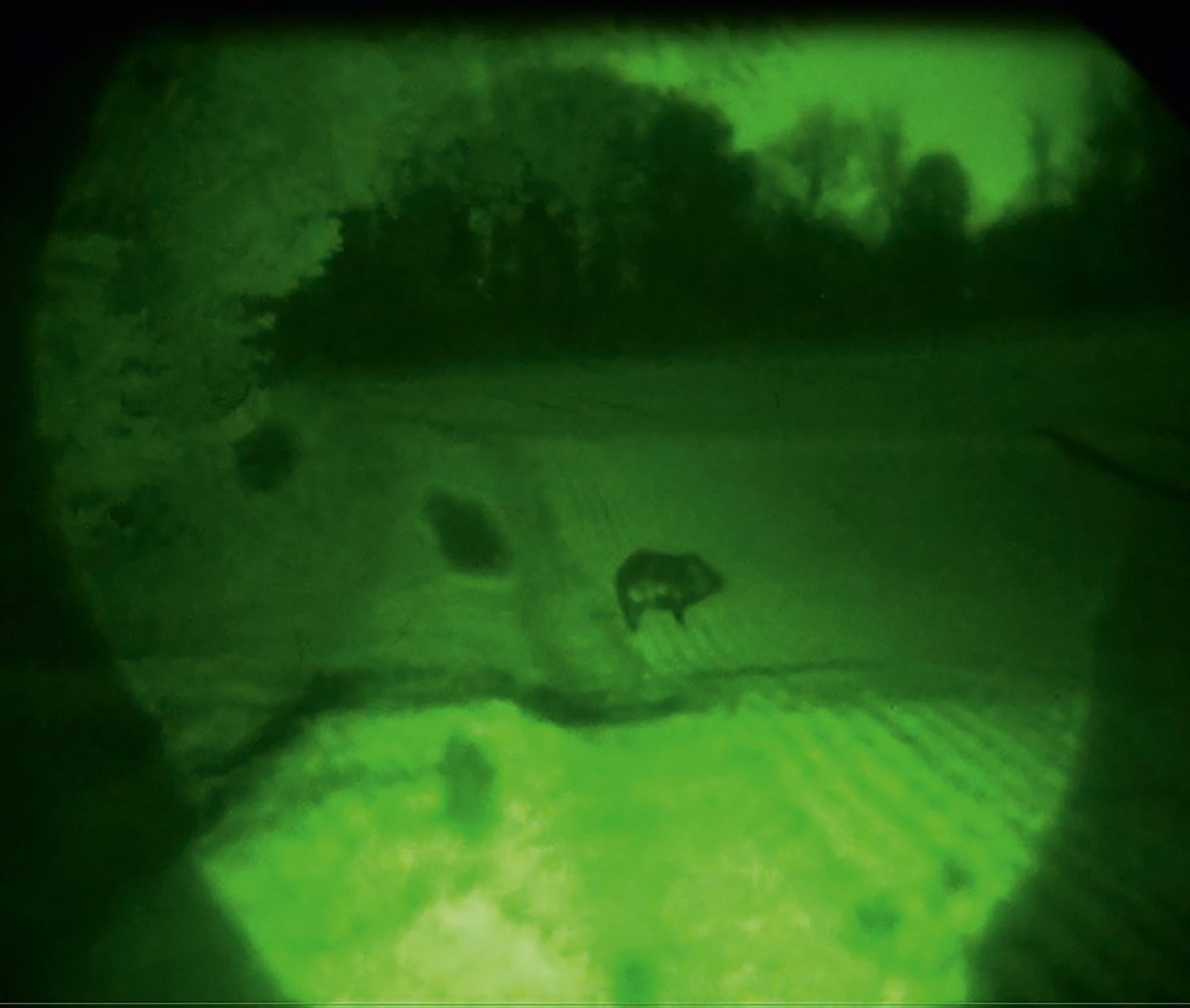 Nachtsichtgerät Jahnke Nachtsichtgeräte - Neue Technik für die Jagd