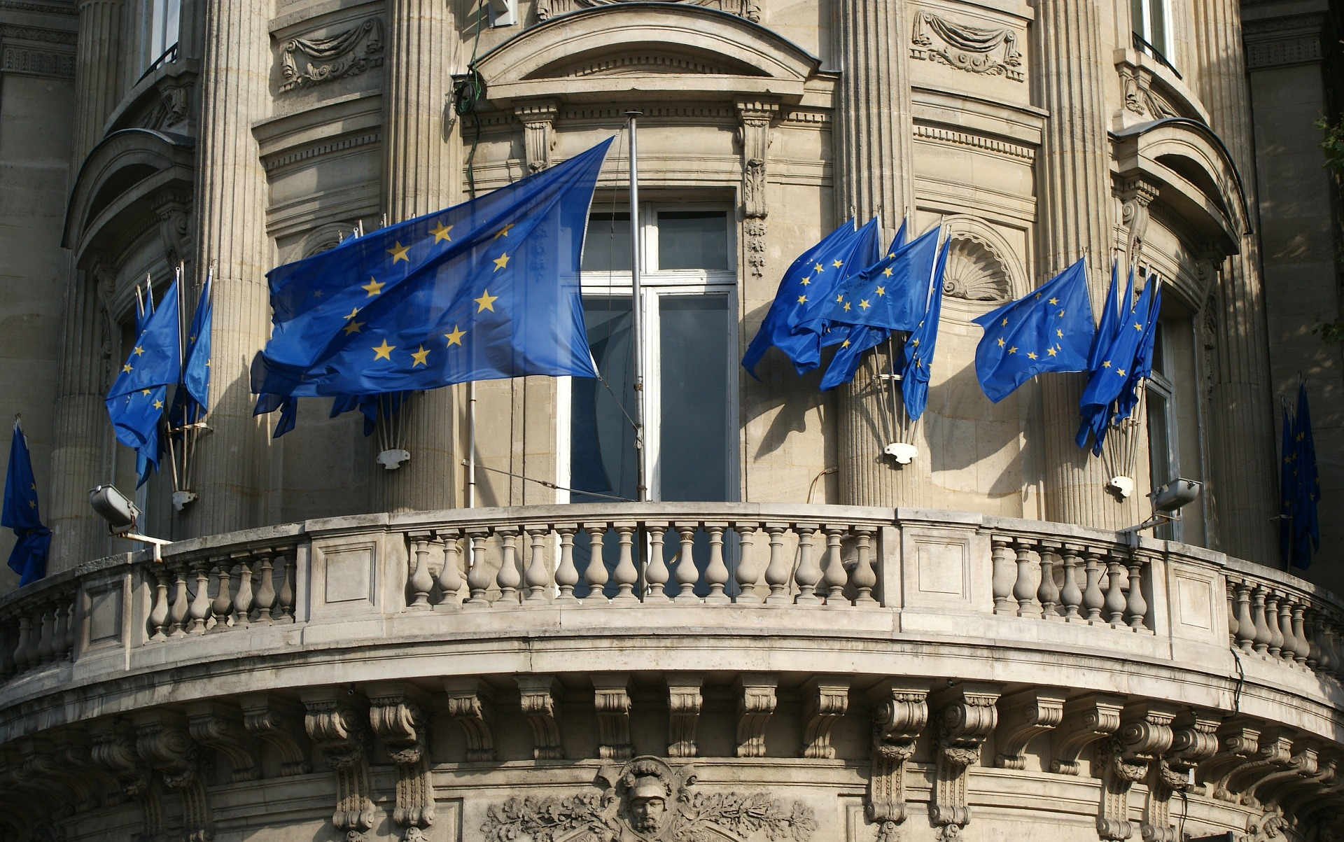 In der Europawahl 2019 wird ein neues Parlament gewählt. Wie Deutschlands Parteien im EU-Parlament beim Thema Jagd ticken, hat der DJV herausgefunden.