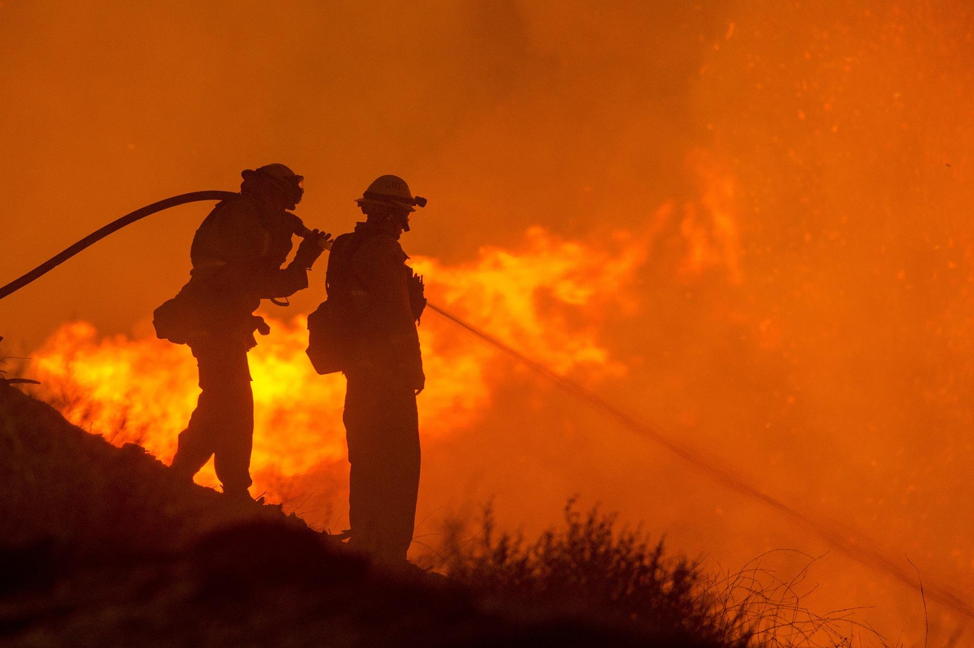 Es ist heiß in Deutschland, zu heiß für unsere Wälder. Jetzt warnt der Verband der Waldeigentümer: Ein Waldbrand kann bei diesem Wetter schnell ausbrechen.
