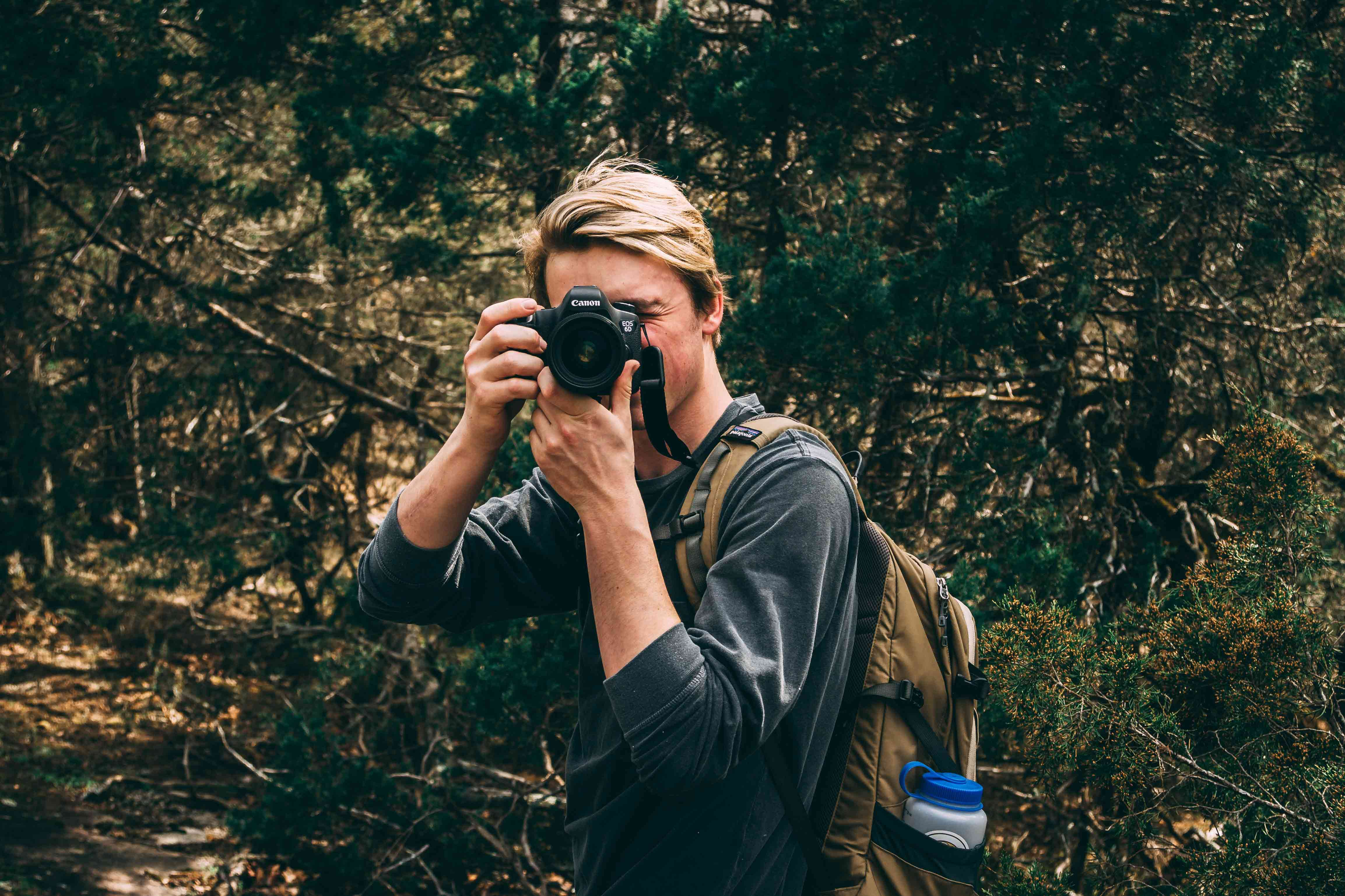 Im Netz sorgt das Wolfsvideo von Hünxe für ordentlich Zündstoff. Jetzt halten Wolfstouristen in Hünxe den jagdlichen Betrieb auf.
