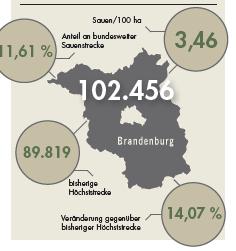 Sauenstrecke für Brandenburg im Jagdjahr 2019/20.