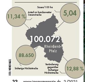 Sauenstrecke für Rheinland-Pfalz im Jagdjahr 2019/20.